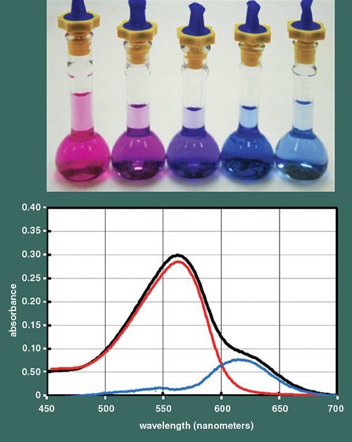 Solutions of delphinidin pigments at similar concentrations (except in the final vial which is lower) show the color shift that occurs when aluminum is ...