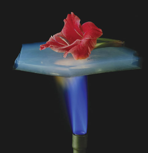 Aerogels are 99.8 percent air, yet they are exceptional insulators because they thwart air molecules from transferring thermal energy. The thin aerogel shown here is completely shielding a flower from the direct flame of a Bunsen burner.<strong> Image courtesy of NASA.</strong>