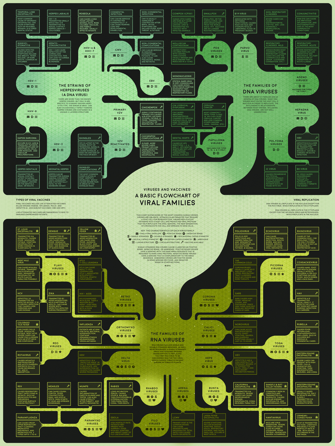 Viruses and Vaccines: A Basic Flowchart of Viral Families